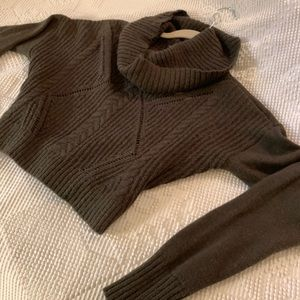 EXPRESS x Olive cropped sweater size XS
